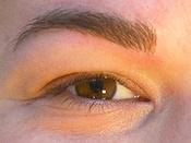 Permanent makeup på øjenbryn